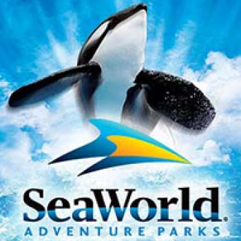 SeaWorld Orlando Senior Discount