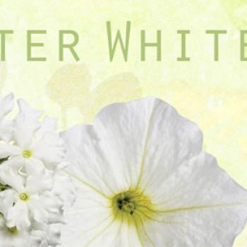 Free 2015 Gardener's Idea Book