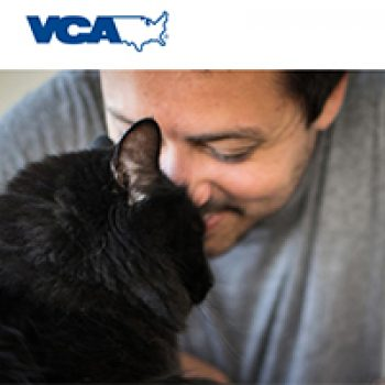 Free Pet Health Exam @ VCA Animal Hospitals