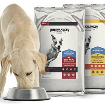 Free Breakaway Dog Food Samples