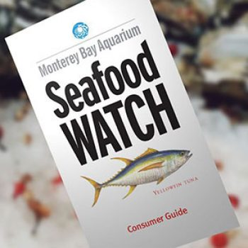 Free Seafood Watch Consumer Guide Free 4 Seniors