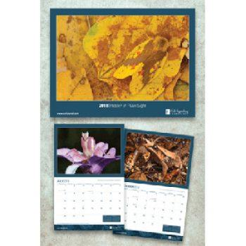 Free 2018 CST Calendar